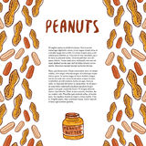 Cute peanuts template. Sketched nuts hand drawn vector background. For your packaging design, healthy food magazine page. Stock Photo