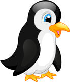 Cute penguin cartoon Stock Image