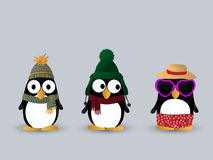 Cute penguin characters Royalty Free Stock Photo