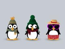 Cute penguin characters. Cute little penguin cartoon characters Royalty Free Stock Photo