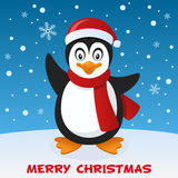 Cute Penguin Christmas on the Snow Royalty Free Stock Image