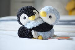 Cute Penguin Dolls Music Box Royalty Free Stock Photo