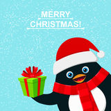 Cute penguin with gift box and felicitation Merry Christmas Royalty Free Stock Image