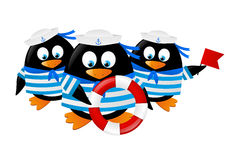 Cute penguin sailors Stock Image