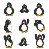 Cute Penguin Set Stock Photos