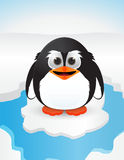 Cute penguin on snow Royalty Free Stock Photos