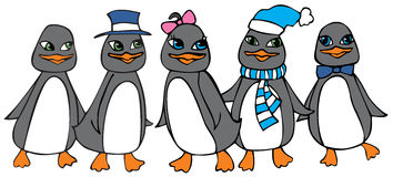 Cute penguins. Group of five cute penguins Royalty Free Stock Photo