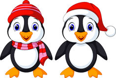 Cute penguins cartoon Stock Images