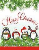 Cute penguins. Christmas background with fir and cute penguin Stock Photo