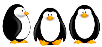 Cute Penguins Clipart Isolated on White Background Royalty Free Stock Photography