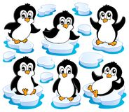 Cute penguins collection Stock Photography