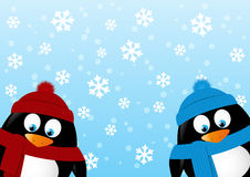 Cute penguins on winter background Royalty Free Stock Photos