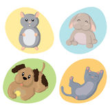 Cute Pets. Set of cute happy  pet animals : hamster, rabbit, dog, cat Stock Photography