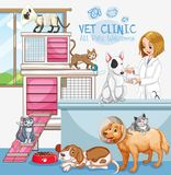 Cute Pets Clinic Welcome Sign. Illustration Stock Photos