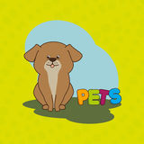 Cute pets design. Illustration eps10 graphic Stock Images