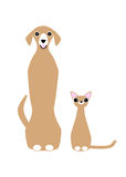 Cute pets image. A dog and a cat sitting together. Stock Photo