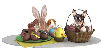 Cute pets make an effort above table and looking to the easter eggs. Isolated Stock Photography