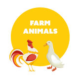 Cute pets poultry, rooster and duck,  on white background. Royalty Free Stock Photos