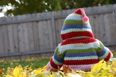 Cute photo of baby toddler little kid with hooded sweatshirt sitting in fall leaves outside in yard. Stock Photography
