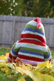 Cute photo of baby toddler little kid with hooded sweatshirt sitting in fall leaves outside in yard. Royalty Free Stock Images