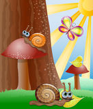 Cute picture with snails. Stock Photo