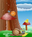 Cute picture with snails. Royalty Free Stock Images