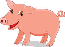 Cute pig. Illustration of a cute pig Royalty Free Stock Images