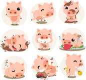 Cute Pig in action set Royalty Free Stock Photography