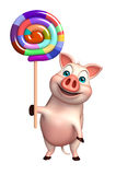 Cute Pig cartoon character  with lollypop Stock Photos