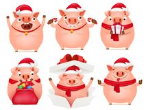 Cute pig cartoon character set. Template for new year card stock illustration