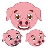 Cute pig cartoon head set Stock Photos