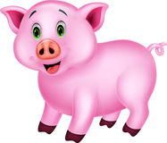 Cute pig cartoon Royalty Free Stock Images