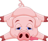 Cute pig cartoon Royalty Free Stock Image