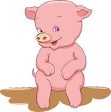 Cute pig cartoon Stock Photo