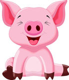 Cute pig cartoon Stock Photos
