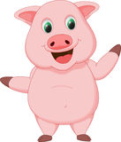 Cute pig cartoon Stock Photography