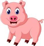 Cute pig cartoon posing Stock Images