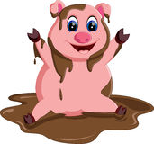 Cute pig cartoon posing Royalty Free Stock Photography