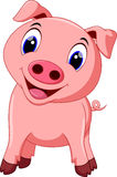 Cute pig cartoon. On a white background vector illustration