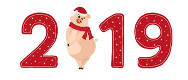 Cute pig character. 2019 New Year symbol. New year sign 2019 with shy pig in a hat and scarf . Used as logo, emblem for posters, banners, greeting or calendar royalty free illustration
