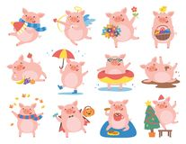 Cute pig in different situations. Symbol of the year in the Chinese 2019