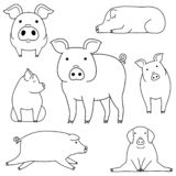 Cute and simple pig doodle drawing set. Cute pig doodle drawing set, making various poses royalty free illustration