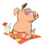 Cute pig farm animal cartoon. The small pig has a rest on a beach Stock Photos