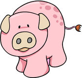 Cute Pig Illustration. Cute Farm Pig Vector Illustration Royalty Free Stock Images