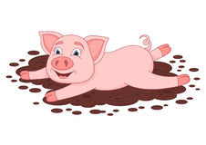 Cute pig in a puddle, funny piggy lies and smiling Stock Photo
