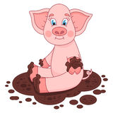 Cute pig in a puddle, funny piggy sits Stock Photography