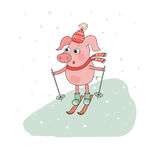 Cute Pig Skier. Lovely cartoon Character. Vector illustration of winter sport activities, outdoor playing Royalty Free Stock Image
