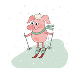 Cute Pig Skier. Lovely cartoon Character. Vector illustration of winter sport activities, outdoor playing Royalty Free Stock Photos