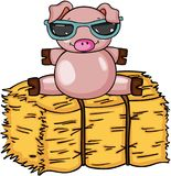 Cute pig with sunglasses on bale of hay Stock Photo