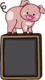 Cute pig on top of on black chalkboard Royalty Free Stock Photography
